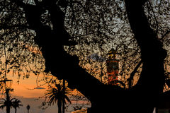 Clock Tower on Sunset. Clock tower of Izmir from behind of a tree Royalty Free Stock Image