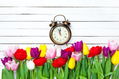 Clock and tulips Stock Images