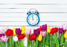 Clock and tulips Royalty Free Stock Images