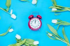 Clock and tulips Stock Photos