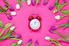 Clock and tulips. Beautiful red alarm clock and tender white and purple tulips lying on the wonderful pink background Royalty Free Stock Photography