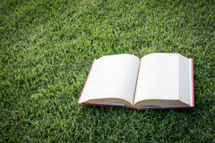 Clock up open blank book on the grass field Stock Photos