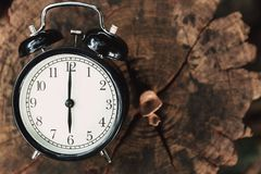 Clock on wood tree nature background time at 6 o`clock. Morning stock images