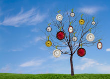 Clocks hanging from a tree Royalty Free Stock Images