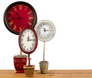 Clocks on a topiary Stock Images