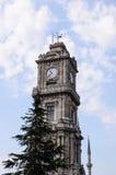 Clocktower-behide Baum Stockbild