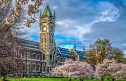 University of Otago. The clocktower building at the University of Otago in Dunedin, New Zealand. It is the oldest University in New Zealand opened in 1871 royalty free stock photography