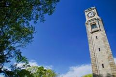 Clocktower e cielo blu degli alberi immagini stock