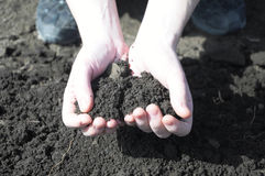 Clod of earth in the hands of the farmer Royalty Free Stock Photography