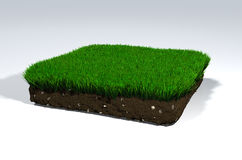 Clod of soil Royalty Free Stock Photo