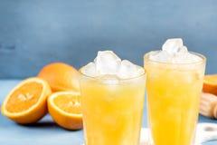 Clode upp exponeringsglas av orange fruktsaft med iskuber Royaltyfria Foton