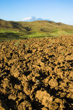 Clods of land Stock Image