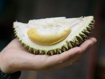 Cloes вверх по свежему плодоовощ дуриана Puangmanee в руке Стоковые Фото