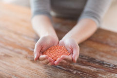 Cloes up of female cupped hands with quinoa Royalty Free Stock Photo