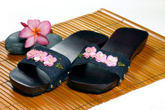 Clog and flowers Stock Photos