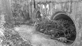 Clogged. A clogged Storm drain from the floods with some graffiti Stock Images