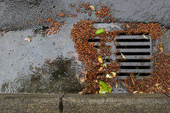 Clogged a street drain during a rain storm. Tree debris clogging a street drain during a rain storm Stock Photos