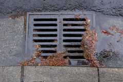 Clogged a street drain during a rain storm Stock Photography