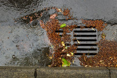 Clogged a street drain during a rain storm. Tree debris clogging a street drain during a rain storm Royalty Free Stock Images