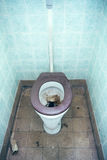Clogged toilet royalty free stock photography