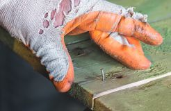 Clogging a nail in a wooden board. Worker in gloves holding and clogging a nail in a wooden board Royalty Free Stock Image