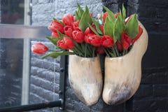 Clogs и красные тюльпаны, Амстердам, Голландия Стоковые Фотографии RF