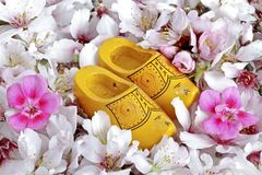 Clogs with flowers from Holland. Isolated on white Stock Photography