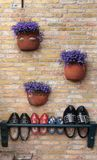 Clogs with violet flowers Royalty Free Stock Photos