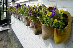 Clogs in a wall as flowerpots with pansies. An image of clogs in a wall as flowerpots with pansies Royalty Free Stock Images
