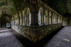 Free Cloister 2 Stock Photography - 50185952