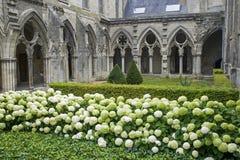 Cloister av abbeyen i Soissons Arkivfoto
