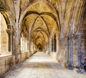 Cloister Cathedral Lisbon Stock Photos