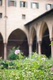 Cloister garden Stock Photo