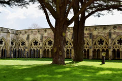 Cloisters, Salisbury Cathedral, Salisbury, Wiltshire, England royalty free stock photo
