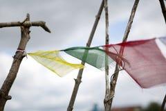 Clolorful佛教祷告下垂在木棍子的飞行 免版税库存图片