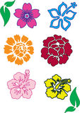Clolorful Flowers. Work with vectors, illustration Royalty Free Stock Photos