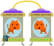 Clone do gato ilustração stock
