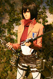 Clone-oid de Mikasa Ackerman de Shingeki aucun Kyojin Photo libre de droits