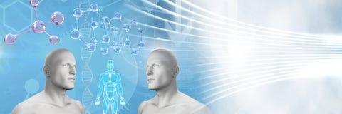Clone twin 3D men with genetic DNA. Digital composite of Clone twin 3D men with genetic DNA Stock Photos