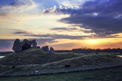 Clonmacnoise Castle Ruins. And cattle. County Offaly. Ireland royalty free stock photography