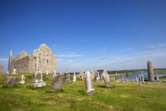 Clonmacnoise Cathedral with the typical crosses and graves. The monastery ruins. Ireland Stock Photo