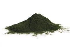Clorella verde fotografia stock libera da diritti
