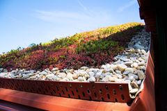 Colorful green living extensive sod roof detail covered with vegetation mostly tasteless stonecrop, sunny day. Colorful green living extensive sod roof detail royalty free stock photo