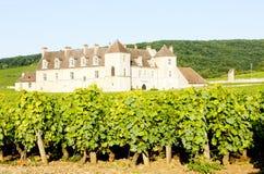 Clos Blanc De Vougeot Castle Lizenzfreie Stockbilder