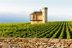 Clos Blanc De Vougeot Castle Royalty Free Stock Photo