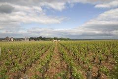 Clos de Vougeot. Grand Cru vineyard of Cote de Nuits, Burgundy, France Royalty Free Stock Photo