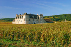 Clos de Vougeot, Borgogna Fotografia Stock