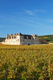 Clos de Vougeot,Burgundy,Burgund Stock Image