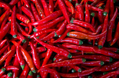Clos up of red chilli peppers Stock Image
