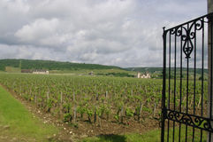 The Clos Vougeot stock images
